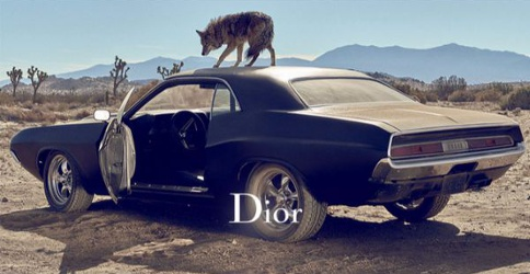 Car and wolf for Dior Sauvage