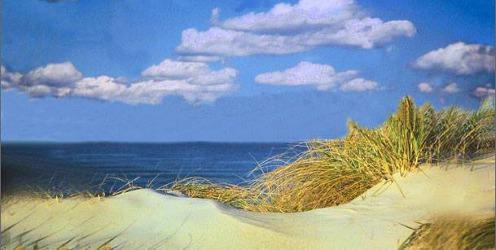 Aroma Sanctum Beachscape brand image