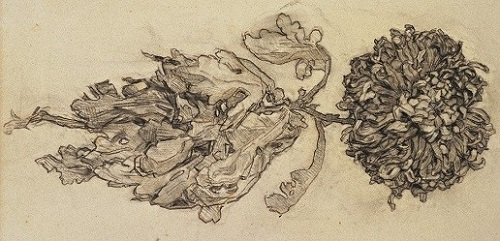 chyrsanthemum by Piet Mondrian