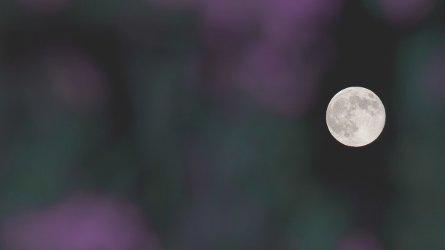 moon-0s