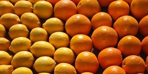 Fête du Citron, Menton