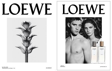 Loewe 001 Man brand images
