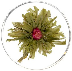 American Tea Room Grand Jasmine Mu Dan Blooming Green Tea